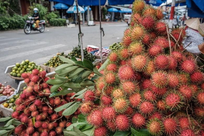 Vietnam Mekong Delta 01