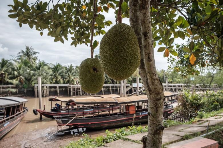 Vietnam Mekong Delta 16