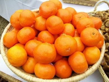 juicer fruits
