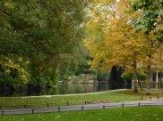 Ses couleurs d'automne