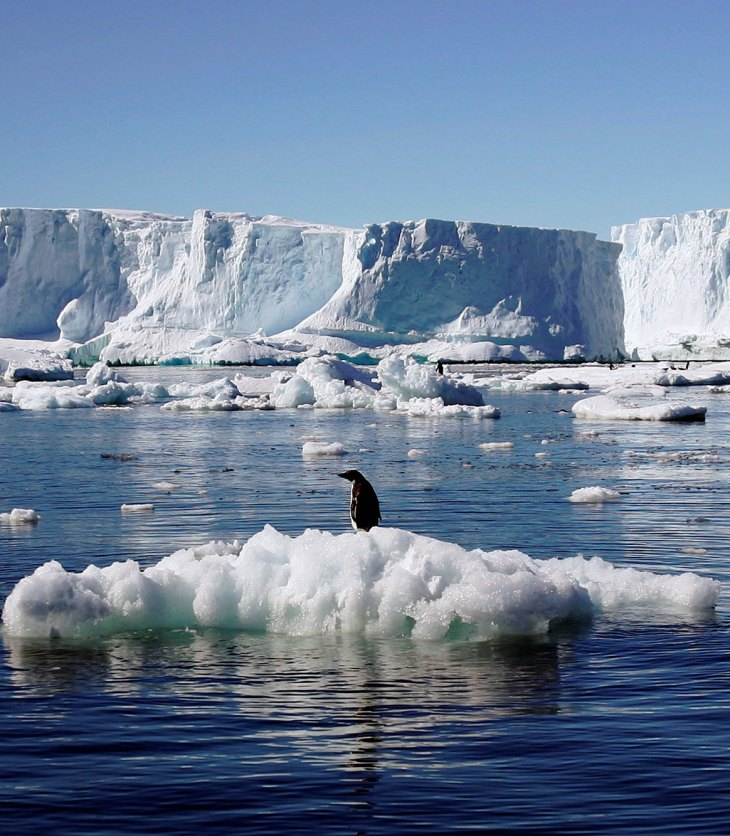 earth's ice lost