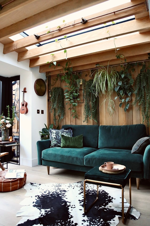 5 of the best low maintenance house plants on this living plant wall.
