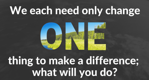 we-each-need-only-change-one-thing-to-make-a-difference-there-are-many-things-from-which-to-choose-3.png