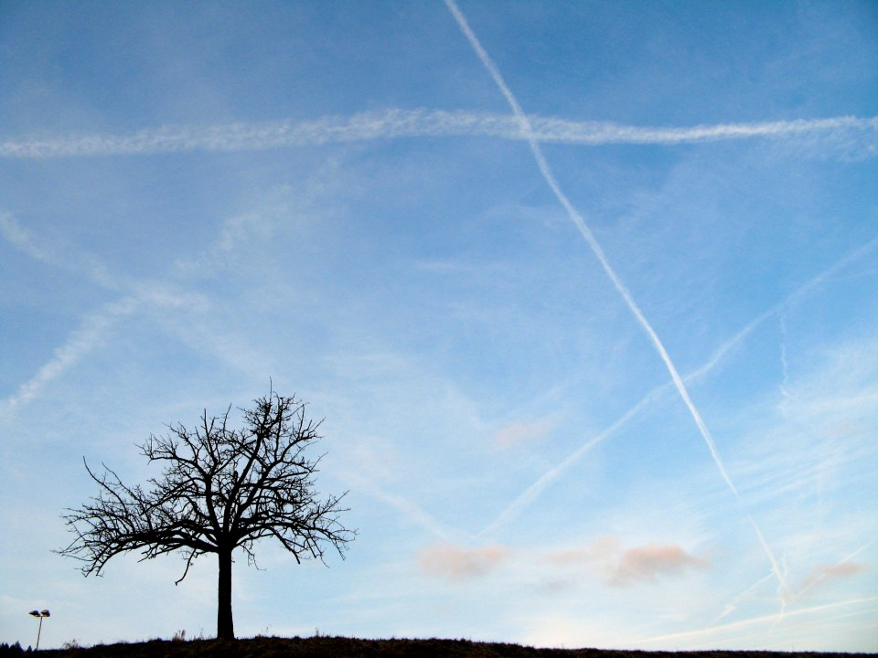 sky with contrails