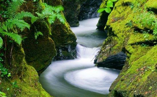 lydford-gorge