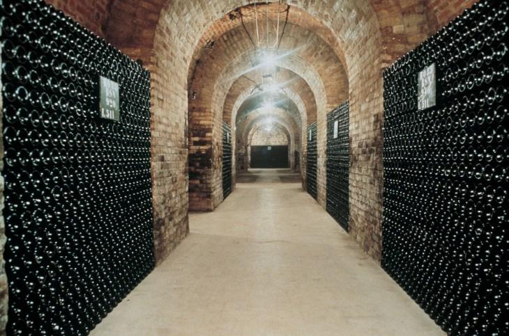 Cellar 3