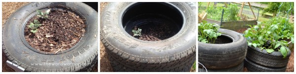 Blog - WW-Farm Life-tire tower