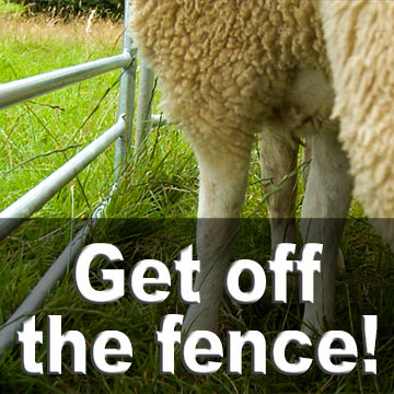 how to train a sheepdog to get sheep off a fence or hedge