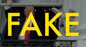 fake politics