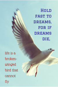 Hold Fast To Dreams For If Dreams Die Life Is A Broken