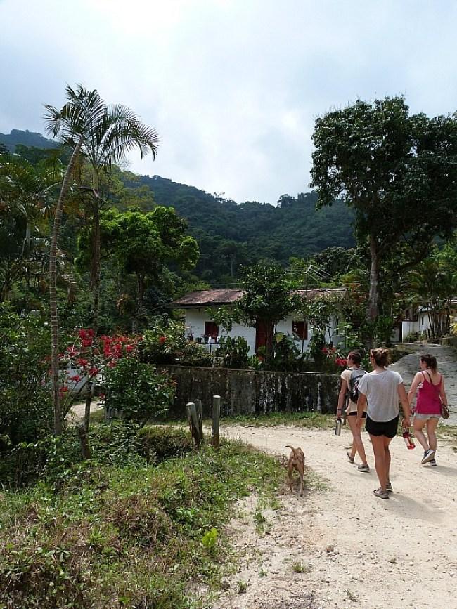 Hiking to a coffee plantation near Minca, Colombia