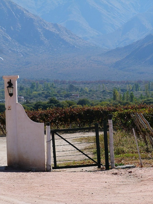 Winery in Cafayate, Northern Argentina