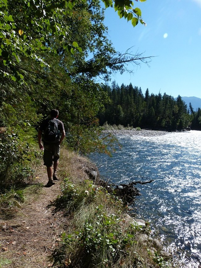 Hiking in Roderick Haig-Brown Provincial Park in the Shuswap Lake Region of British Columbia
