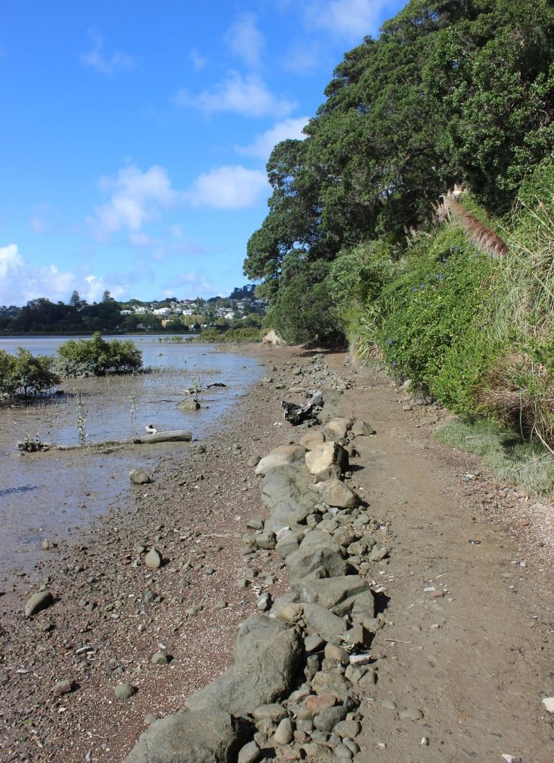 Hobson's Bay Walkway in Auckland, New Zealand