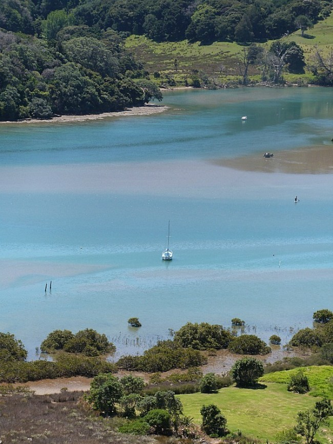 Exploring the coast of Waiheke Island - one of the Best Days out in Auckland New Zealand