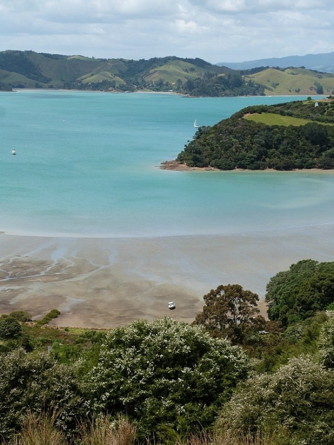 Exploring the hiking trails of Waiheke Island - one of the Best Days out in Auckland New Zealand