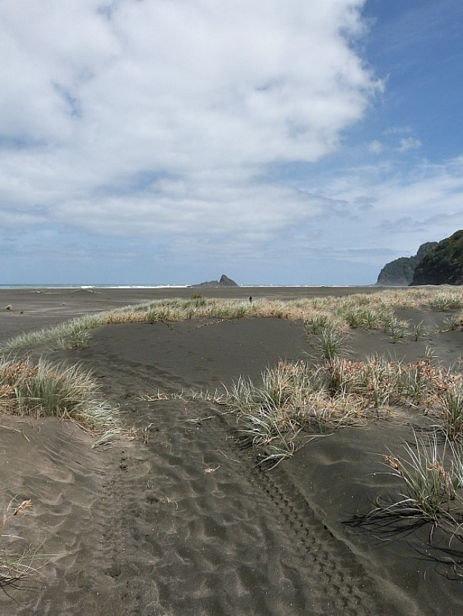 Exploring the beaches of Auckland's rugged West Coast - one of the Best Days out in Auckland New Zealand