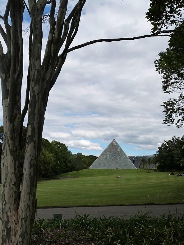 Sydney Botanical Gardens - One of the 30 reasons why I love Sydney