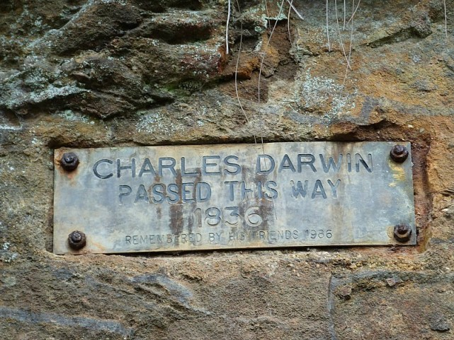 Charles Darwin hike in the Blue Mountains of Australia