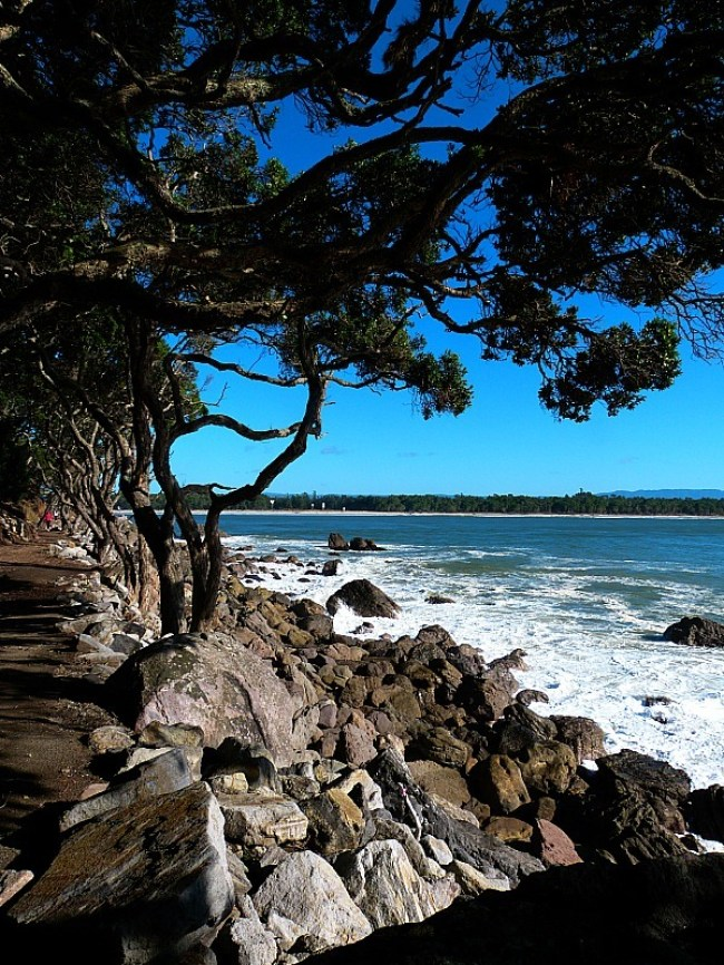 Walking aroung Mount Maunganui on a visit back home to New Zealand