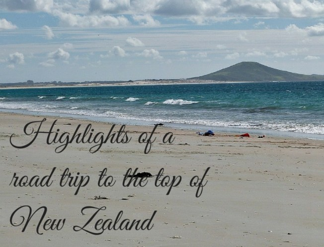 The Ultimate Northland New Zealand Road Trip Itinerary