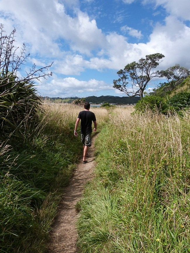 Hiking in Northland New Zealand - part of The Ultimate Northland New Zealand Road Trip Itinerary