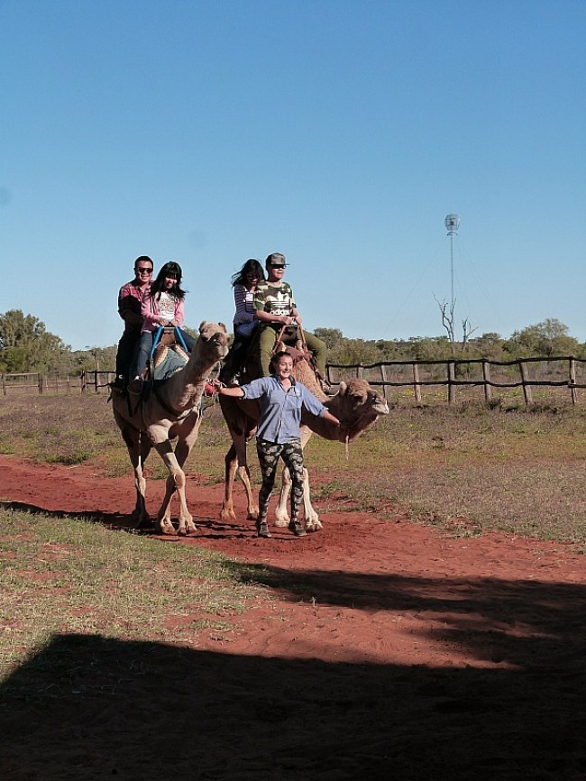 Camel riding near Uluru in the Australian Outback