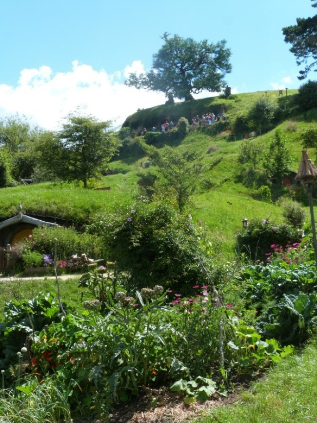 The gorgeous grounds of Hobbiton New Zealand
