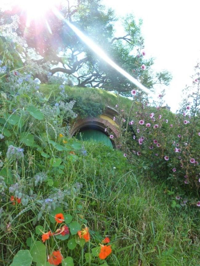 Hidden Hobbit hole at Hobbiton