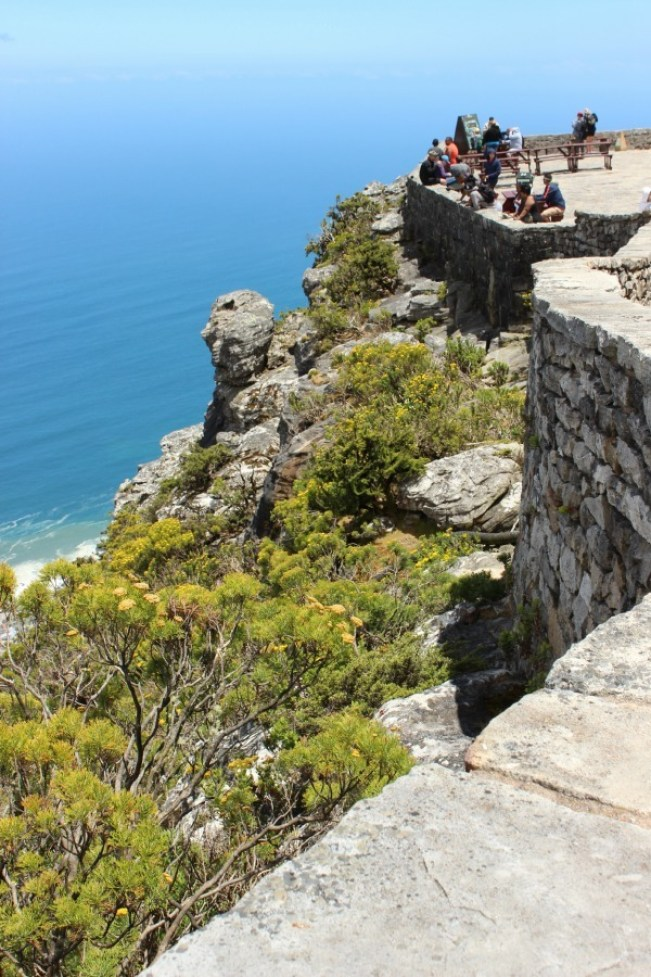 Taking in the views from the top of Table Mountain in Cape Town
