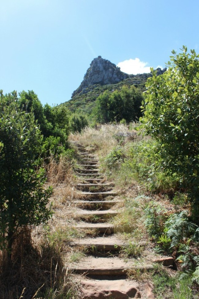 Hiking above Constantia Nek in Cape Town's Mountains