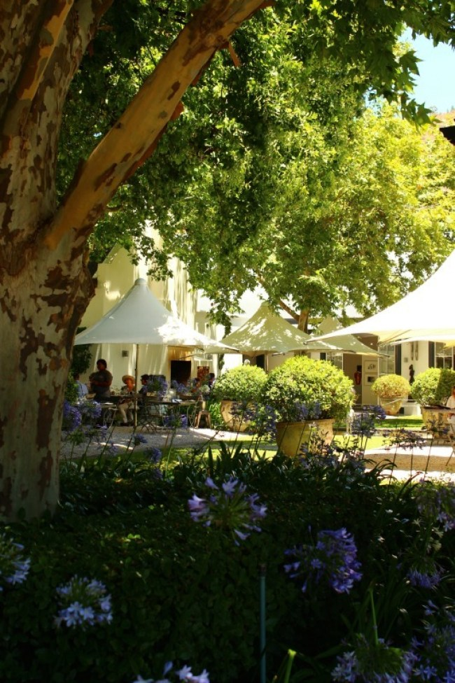 Grande Provence Winery in the Cape Winelands, South Africa