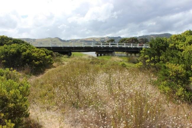 Apollo Bay on Australia's Great Ocean Road