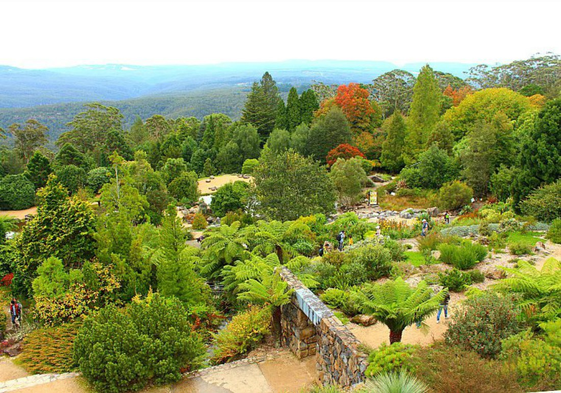 Experiencing Real Autumn in the Blue Mountains of Australia