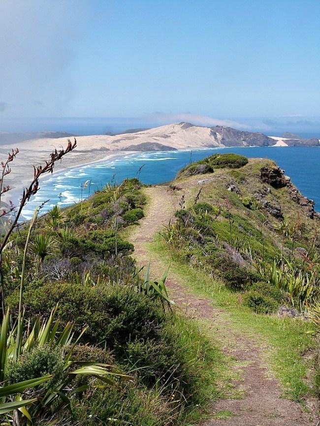 Cape Reinga views
