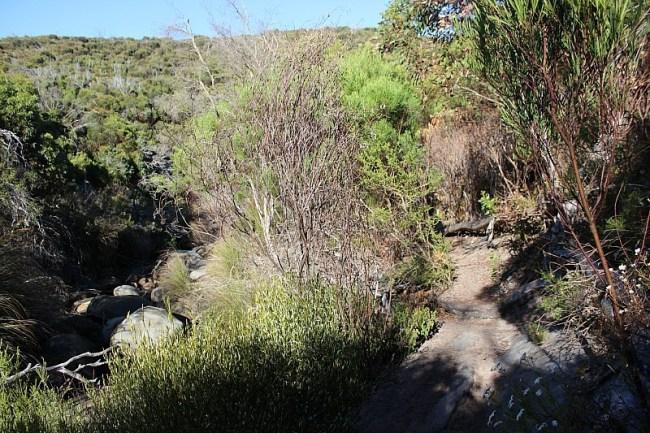 Hiking Ravine des Casoars on Kangaroo Island