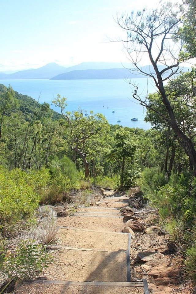 View from Summit hike on Fitzroy Island