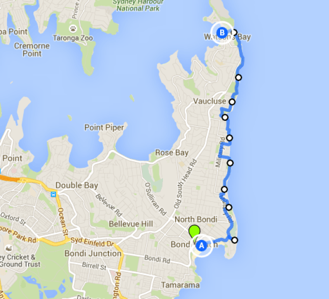 Bondi Beach to Watson's Bay walk- one of the best Sydney walks