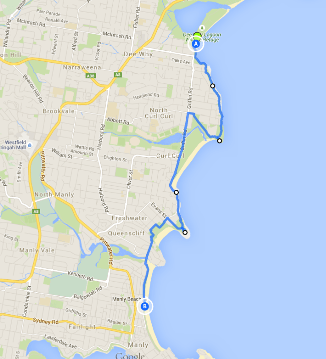 Dee Why to Manly walk - one of the best Sydney walks