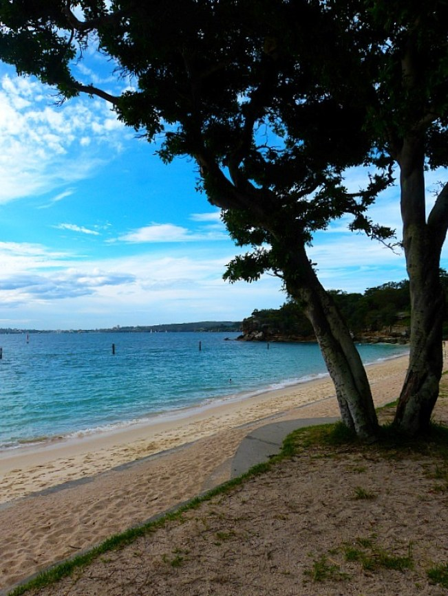 Shark Beach on Rose Bay to Watsons Bay walk - one of the best Sydney walks