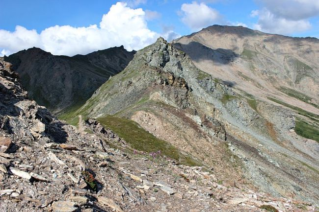 Hiking the Mount Healy Overlook Trail in Denali National Park, Alaska during month two of digital nomad life