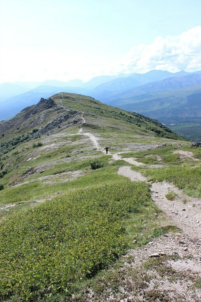 Denali National Park Hiking trail