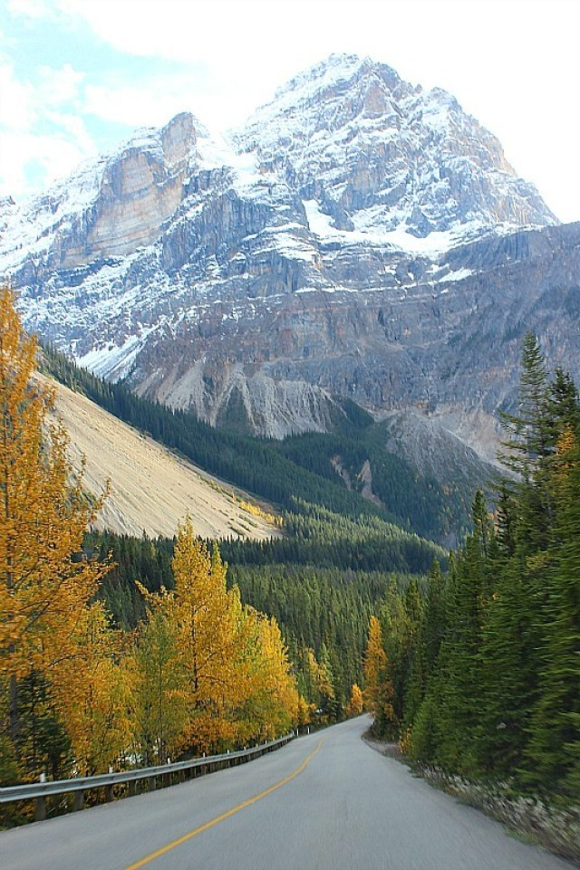 The road to Takakkaw Falls from Field BC
