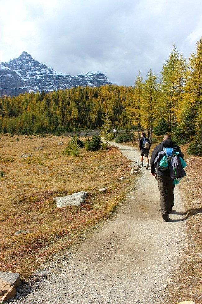 Hiking Larch Valley - one of the best fall hikes in Banff National Park