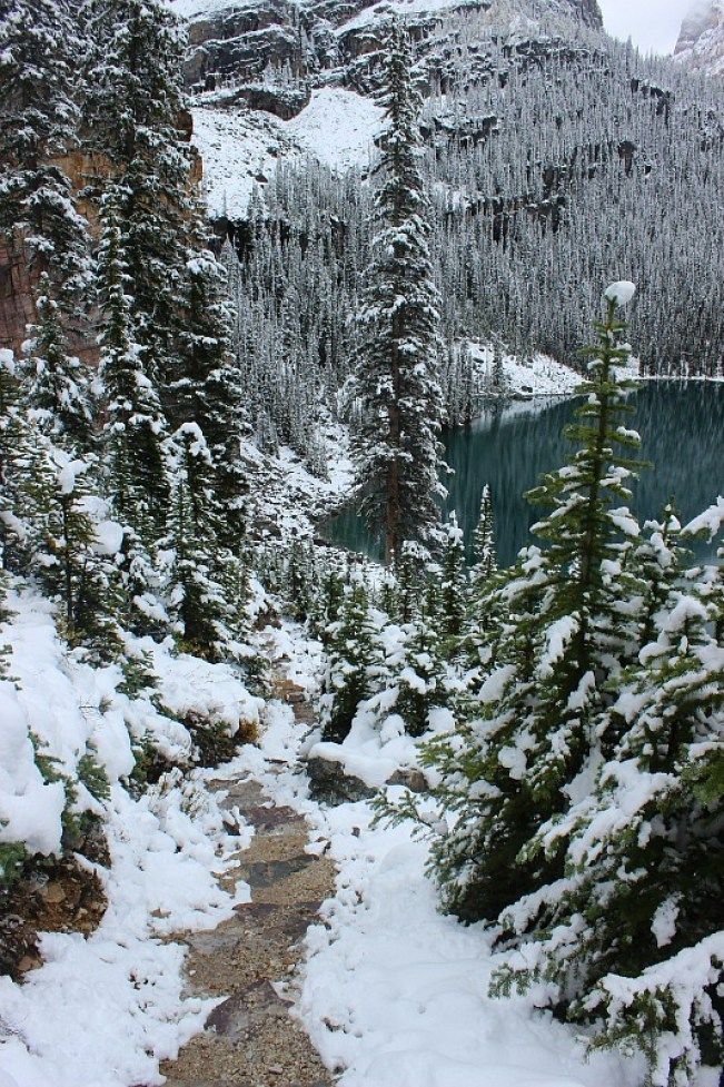 Snow covered path down to Lake O'Hara on the way back from Abbot Pass Hut