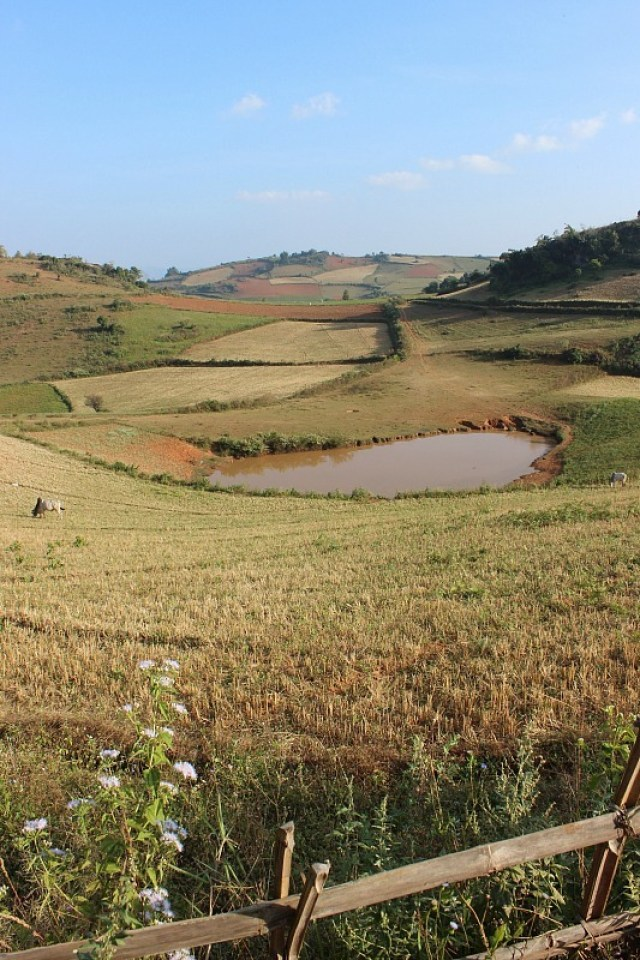 Patchwork fields while trekking Kalaw to Inle Lake