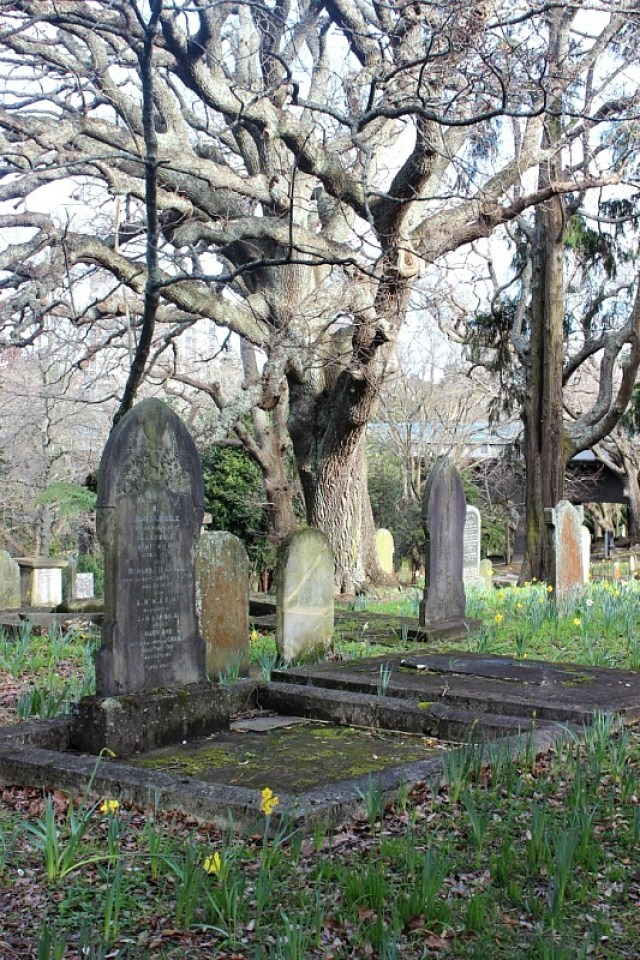 Symmonds Street Cemetery in Auckland, visited during month 14 of digital nomad life - The World on my Necklace
