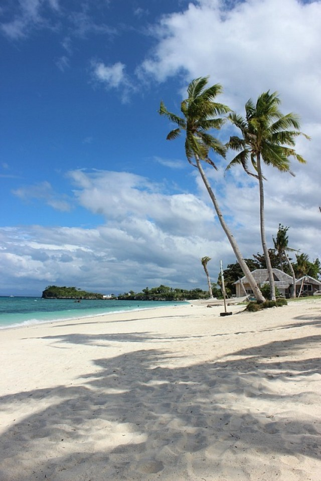 palm-trees-and-beaches-on malapascua island
