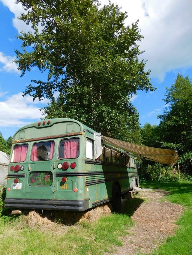 Bus Accommodation on Salt Spring Island Canada as found on Glamping Hub - visited during month twenty four of Digital Nomad life