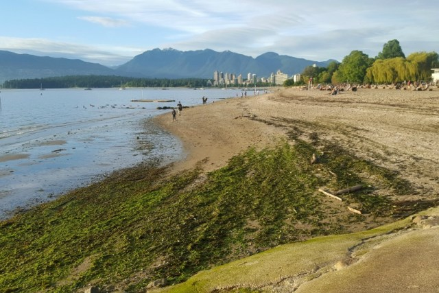 Kitsilano Beach in Vancouver Canada - visited during month twenty four of digital nomad life